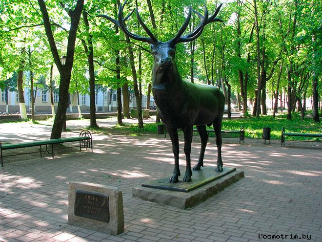 Сад Блонье Смоленск