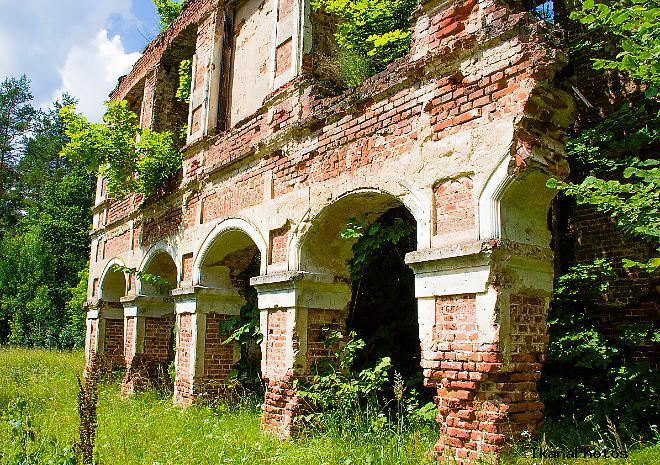 Усадьба Тышкевичей руины в урочище Вялое