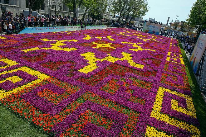 Фестиваля тюльпанов в Стамбуле