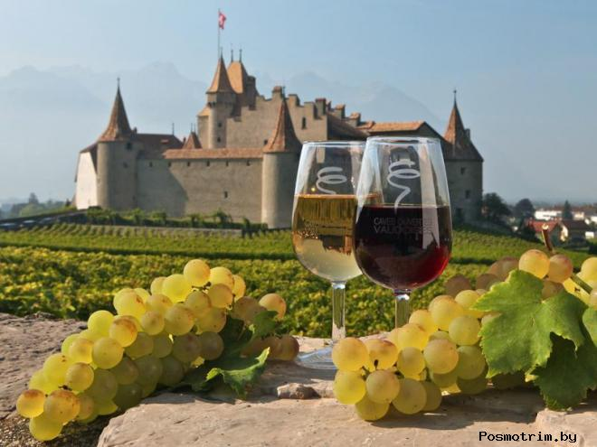 Замок Эгль Швейцария - музей вина