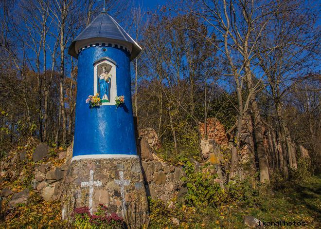 Усадьба в Боровских - Шумских в д. Луковец