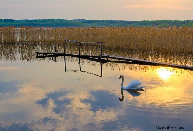 Браславские озёра туристическая стоянка Юбилейная