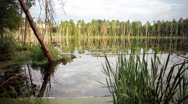 Озеро Смердячье- Космический след