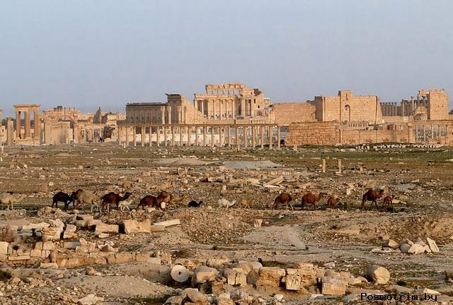 Пальмира — военная база Рима