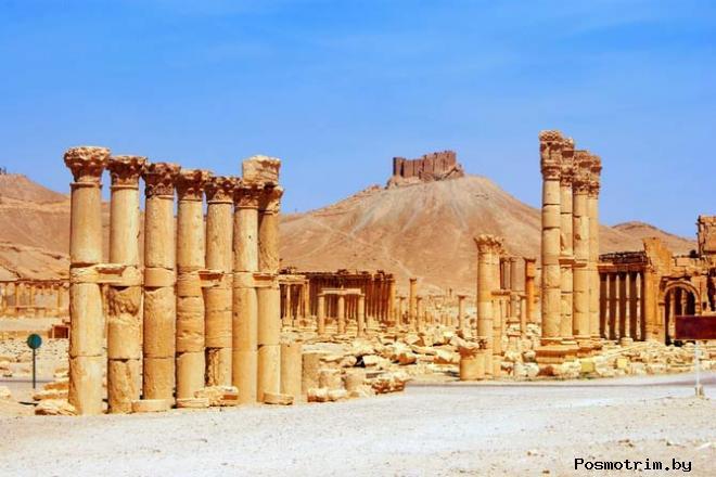 Пальмира в правление Зенобии
