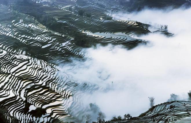 Рисовые террасы в Юньнани