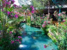 Бассейн Клеопатры в Памуккале лечебные свойства воды
