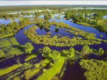 Национальный парк «Припятский» Беларусь фото история описание