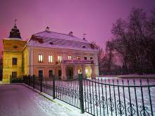 Усадьба Немцевичей Скоки фото история описание дворца в Скоках