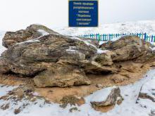 Ледниковый конгломерат песчаник под Раковом