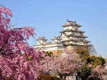 Замок Белой Цапли - Замок Химедзи Япония